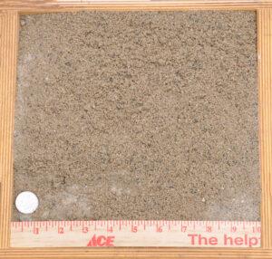 Oly Sand